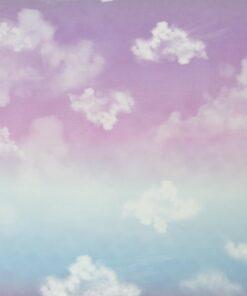 French Terry Cloudy Sky Stoffstübli